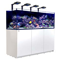 Reefer-Deluxe-XXL-750-Aquarium-(White)-200-Gallons-with-4-x-ReefLED-90-Light-Fixtures-Red-Sea-99.jpg