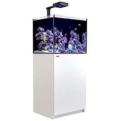 Red Sea Reefer 170 Deluxe White ReefLED™ 90 Living Reef Aquatics Reptiles