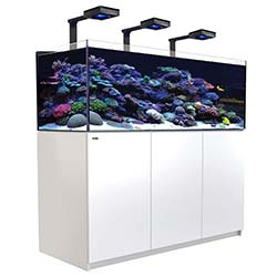 Reefer-Deluxe-XL-525-Aquarium-(White)-139-Gallons-with-3-x-ReefLED-90-Light-Fixtures-Red-Sea-99.jpg