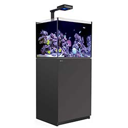 Reefer-Deluxe-Concept-170-Aquarium-(Black)-34-Gallons-with-ReefLED-90-Light-Fixtures-Red-Sea-99.jpg