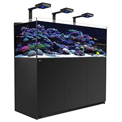 Reefer-Deluxe-XL-525-Aquarium-(Black)-139-Gallons-with-3-x-ReefLED-90-Light-Fixtures-Red-Sea-99.jpg