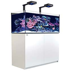 Reefer-Deluxe-Concept-350-Aquarium-(White)-73-Gallons-with-2-x-ReefLED-90-Light-Fixtures-Red-Sea-99.jpg