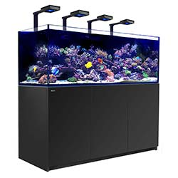 Reefer-Deluxe-XXL-750-Aquarium-(Black)-200-Gallons-with-4-x-ReefLED-90-Light-Fixtures-Red-Sea-99.jpg
