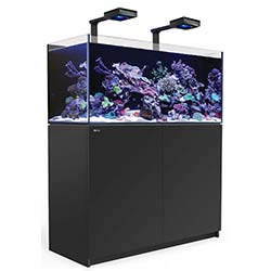 Reefer-Deluxe-XL-425-Aquarium-(Black)-112-Gallons-with-2-x-ReefLED-90-Light-Fixtures-Red-Sea-99.jpg