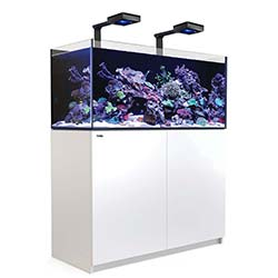 Reefer-Deluxe-XL-425-Aquarium-(White)-112-Gallons-with-2-x-ReefLED-90-Light-Fixtures-Red-Sea-99.jpg